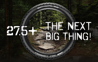 275 The next big thing