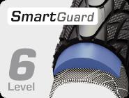 Level 6 Smart Guard